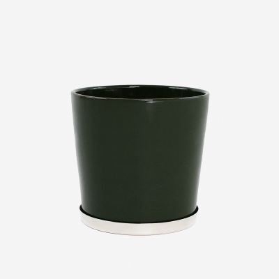 Base Small Pot Palm Green
